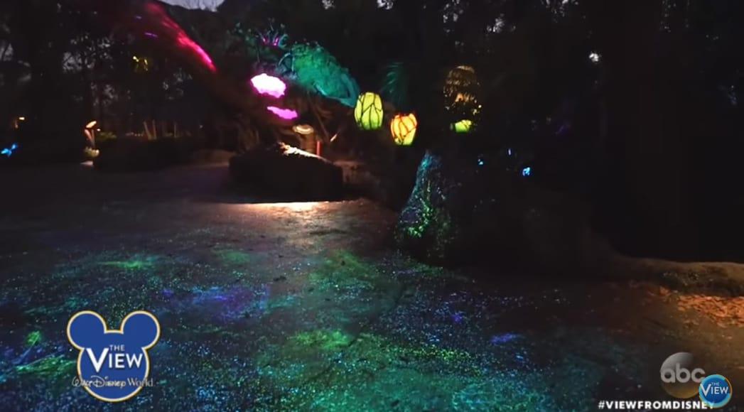 Inside Pandora The World Of Avatar At Disneys Animal Kingdom