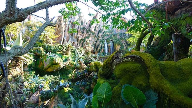 Avatar Flight of Passage in Pandora at Disney's Animal Kingdom (6)