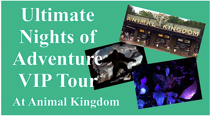 Ultimate Nights of Adventure VIP Tour at Animal Kingdom