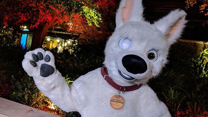 DVC Moonlight Madness at Hollywood Studios Bolt