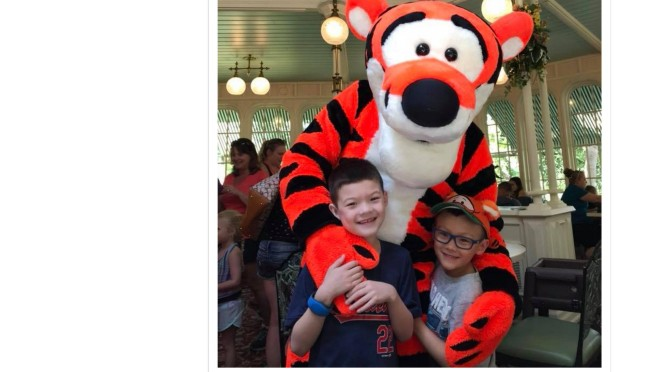 This image has an empty alt attribute; its file name is CP-Tigger_2016.jpg