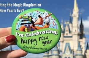 Experiencing Magic Kingdom on New Year's Eve