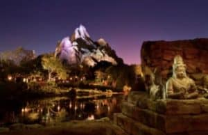 A Review of Animal Kingdom After Hours