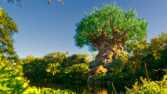 Disney's Animal Kingdom Park Set to Host Multi-Day Celebration in Honor of Earth Day