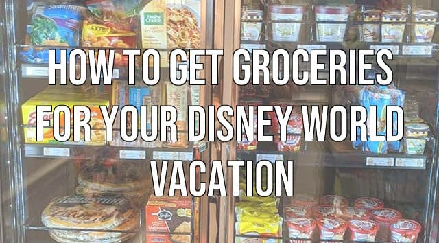 How to Get Groceries for Your Disney World Vacation