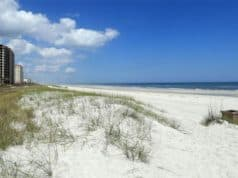 Florida Reopens Some Beaches and Parks with Restrictions