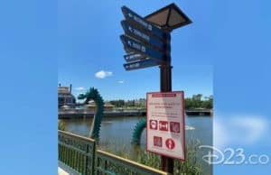 Disney Springs Reopening: What You Can Expect (with Photos)