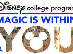 Disney College Program Suspended Until Further Notice