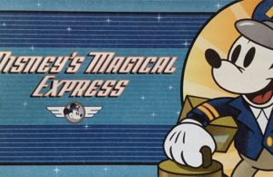 New Information Regarding Luggage Delivery from Disney's Magical Express
