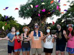 What is Disney's Animal Kingdom Like After Reopening?