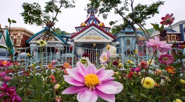Disney CEO Announces Disneyland Negotiations Are More of a Mandate