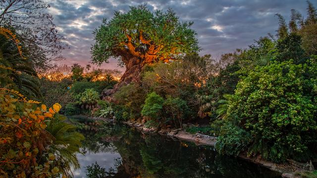 Guest Favorite Show Rumored to Return to Walt Disney World