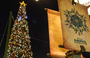 Complete Guide to Touring Animal Kingdom during the Holidays