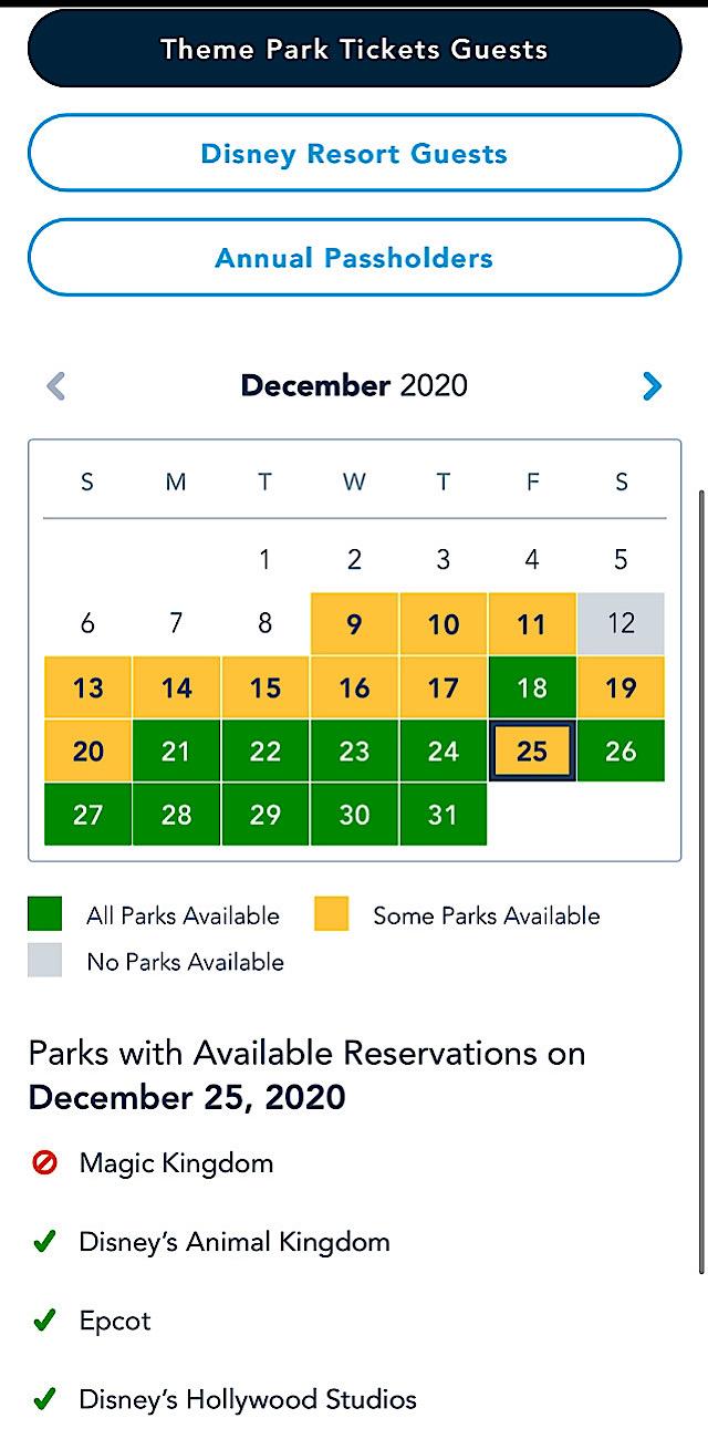 Dec theme park guests pass