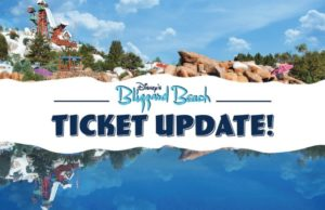 New Ticket Sales and Mask Requirements for Blizzard Beach
