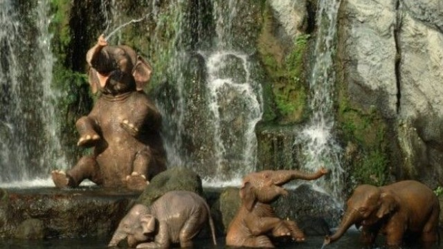 Kenny the Pirate Interviewed About New Jungle Cruise Update for NPR