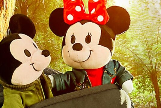 Exciting New Mupgrade to the Disney nuiMO Family