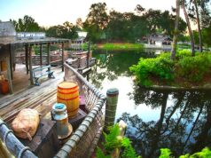Explore All of the Exciting Adventures on Tom Sawyer Island