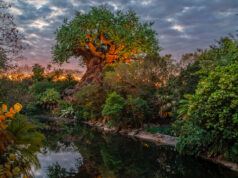 This Animal Kingdom attraction will be closing for refurbishment in March