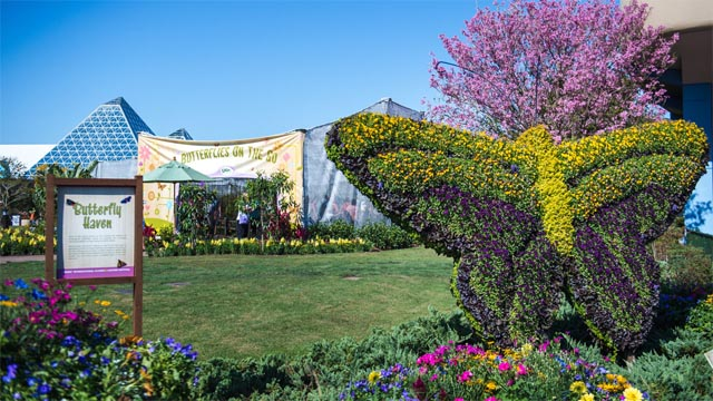 Live entertainment is returning for EPCOT's Flower and Garden Festival!