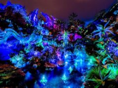 Check Out These Special Limited Time Experiences at Disney's Animal Kingdom