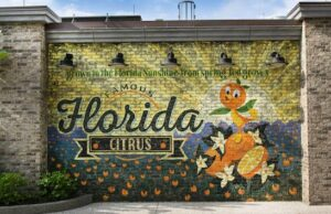 Florida Governor Vows to Ban Vaccine Passports. How will this affect Disney?