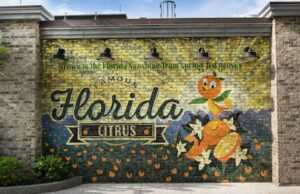 Vaccinated Employees now allowed to remove face masks at this Orlando Theme Park