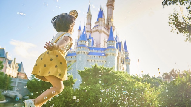 A Brand NEW Disney World Discount is now Available!