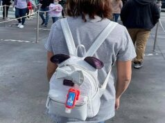 The Best Ways to Store Your Backpack on Rides at Theme Parks