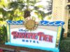 A Beginner's Trip to Disneyland Part Two - Paradise Pier