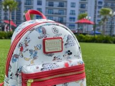 All the necessities you need in your Disney park bag this summer