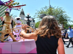 Disney Guests receive new survey about character interactions