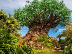 How to Spot Animal Kingdom's Hidden Characters