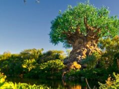This Dining Location is Now Reopening in Disney's Animal Kingdom