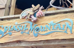 The Reason for Splash Mountain's Extended Closure Today Revealed