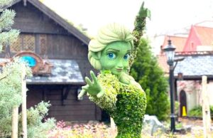 Walt Disney World Now Prepares for Tropical Storm Elsa