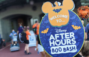 All the characters you can spot at Mickey's Boo Bash 2021