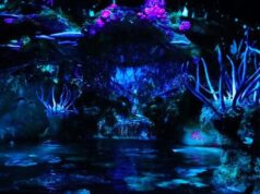 See the Na'vi River Journey Attraction Malfunction