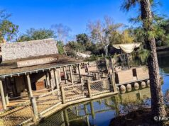Breaking: Guests Evacuated from Tom Sawyer Island as Man with Hatchet Seen in the Area