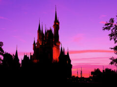 New Details Announced for Sunrise Yoga at Cinderella Castle