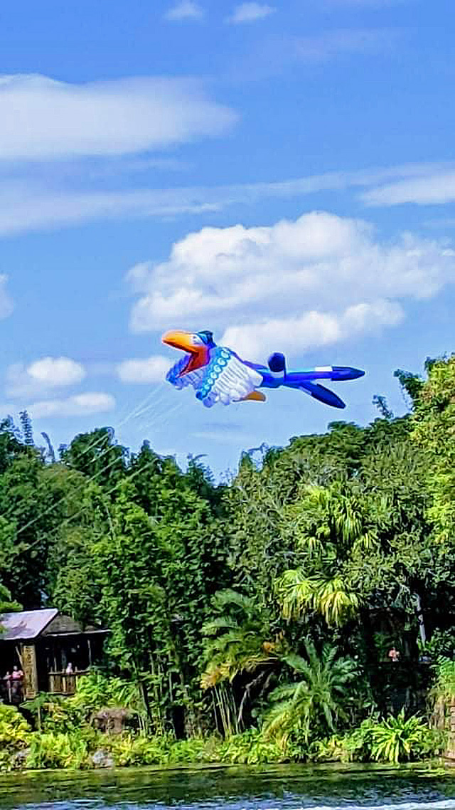 Everything You Need to know about Disney's New Kite Tails Show